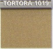 Tortora 1019