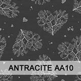 Antracite AA10
